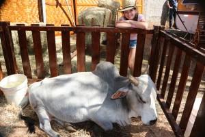 Fazenda do Tio Claudinho! Muitos animais fofinhos...